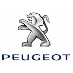 xCarLink pentru Peugeot/Citroen