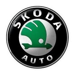 xCarLink pentru Skoda